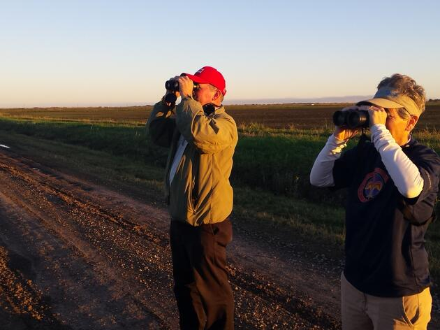 Help Count Birds for Science during Audubon's 117th Annual Christmas Bird Count