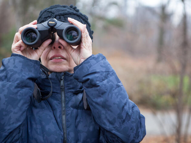 Help Count Birds for Science during Audubon's 118th Annual Christmas Bird Count