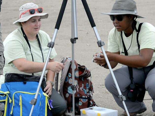 Meet the Audubon Louisiana Technicians Making Beaches Safe for the Birds