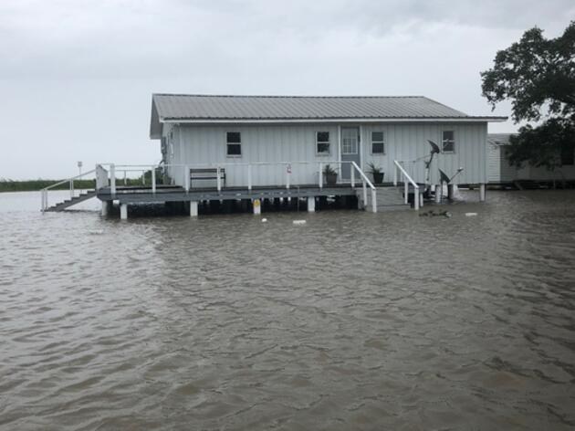 Hurricane Barry was a close-call at the Paul J. Rainey Wildlife Sanctuary