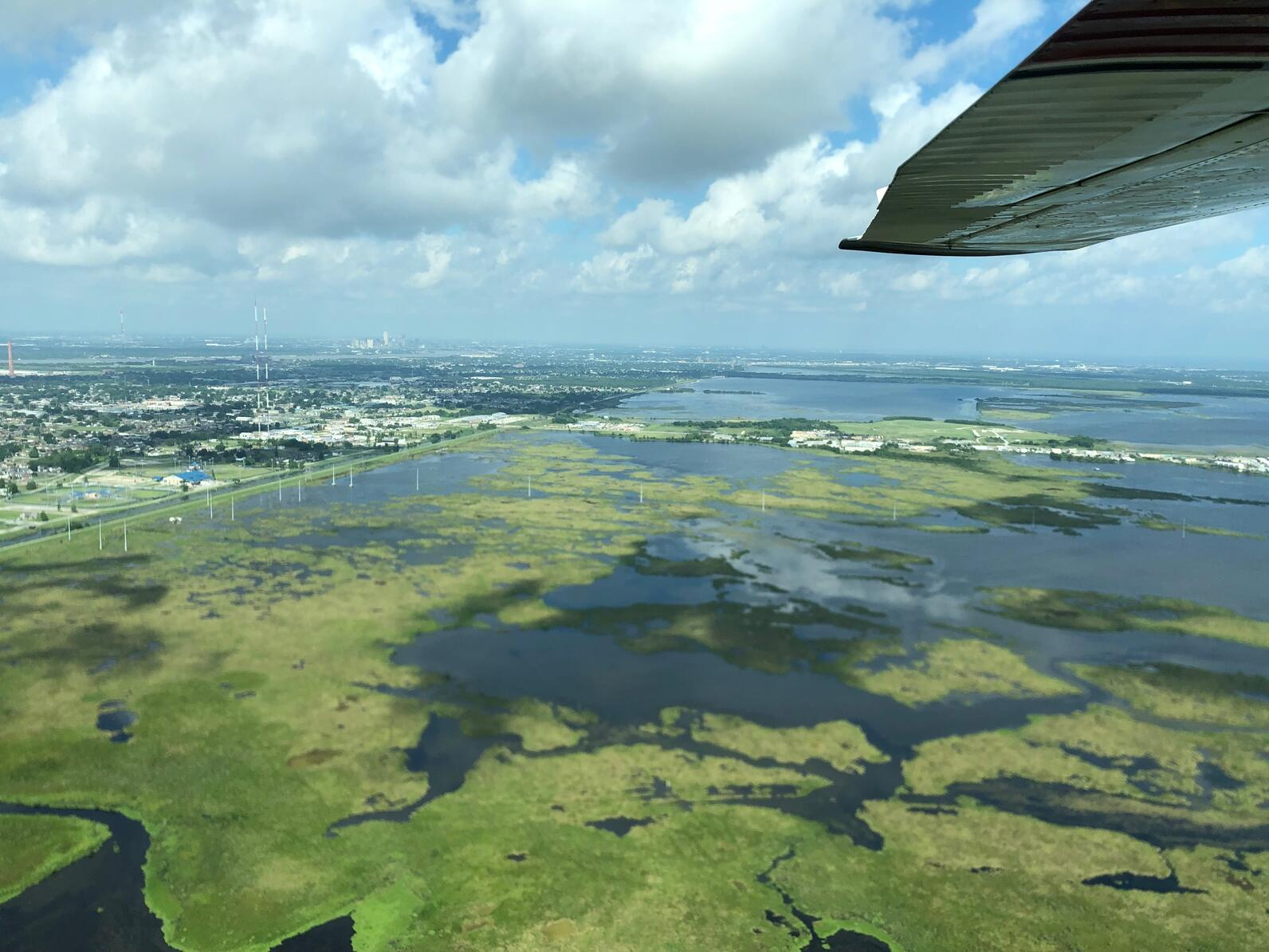 Unhealthy marsh next to coastal communities in Louisiana.